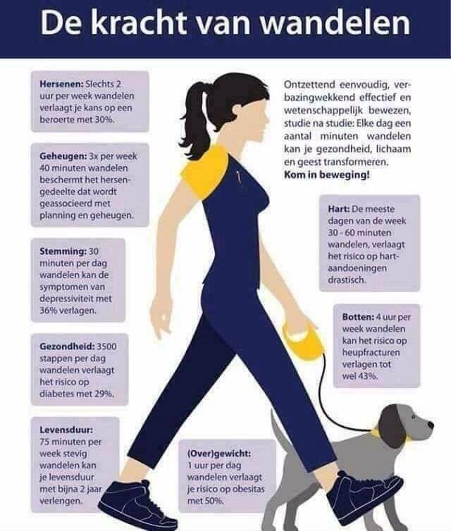 Afbeeldingsresultaat voor de kracht van wandelen
